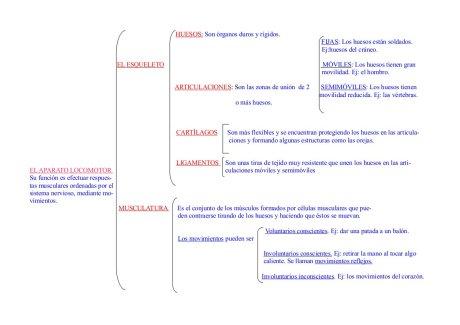 Resumen U3